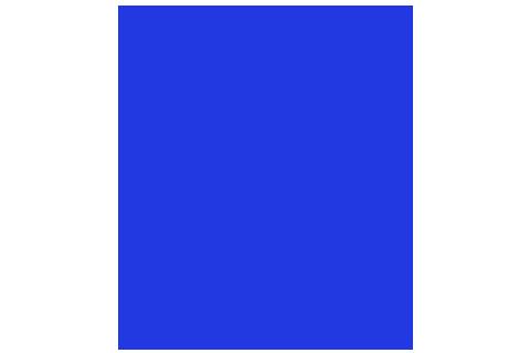Logo skaelec